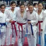 Campeonato Alevín, Infantil y juvenil del karate canario