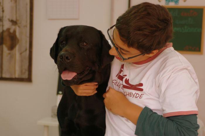 El Aula T.V.A sigue con la Terapia Asistida con perros.
